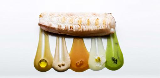 SB-Celler-food